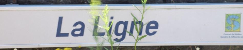Banner-La Ligne
